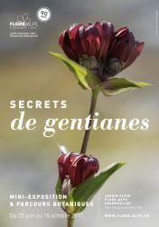 Secrets de gentianes