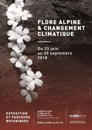 Flore alpine & Changement climatique