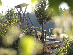 Gräserland – Ein innovatives Wissenschaftserlebnis