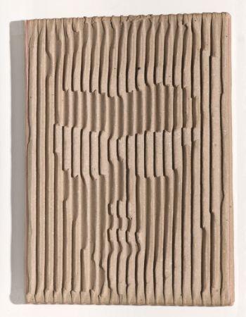 Sammlung im Fokus - Markus Raetz
