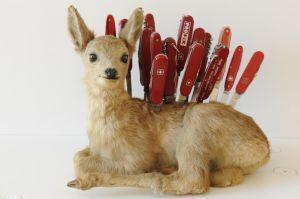 Jäger, Tiere und Wilderer – Handwerk und Legenden in Nidwalden
