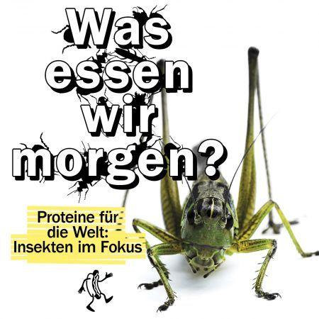 """""""Was essen wir morgen? Proteine für die Welt: Insekten im Fokus"""""""