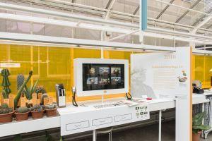 Sukkulentengärten - Geschichten einer Faszination
