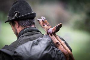 Biwak#28 Auf Pirsch. Vom Handwerk der Jagd
