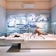 Ausstellungsmanagement
