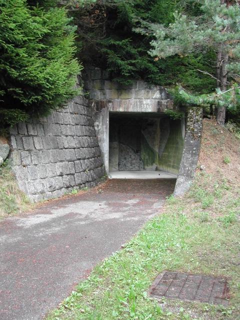 Eingangsbereich verborgen im Wald