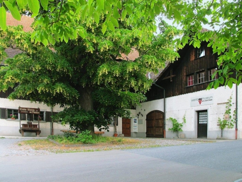 Weinbaumuseum am Fusse der Halbinsel Au