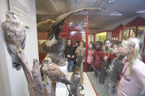 Natur begreifen: Ausstellung