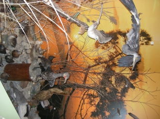 Ausstellung: Am Wasser