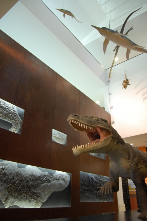 Ticinosuchus ferox