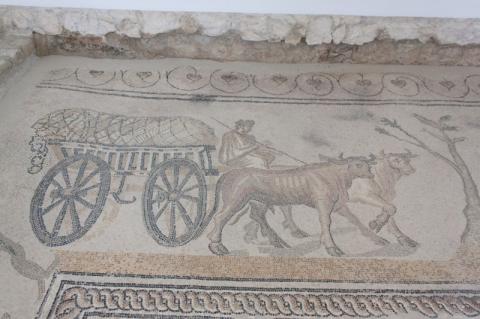 Mosaik Nr. 6 (der rustikalen Prozession) : der Wagen
