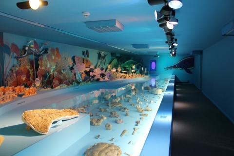 Exposition Jura dans les profondeurs des mers jurassiques