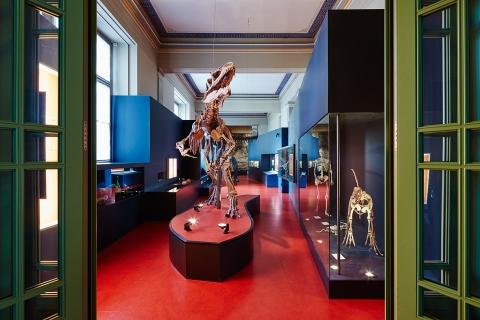 Blick in die Ausstellung Dino & Saurier Foto: Gregor Brändli