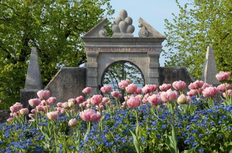 Schloss Wildegg Garten