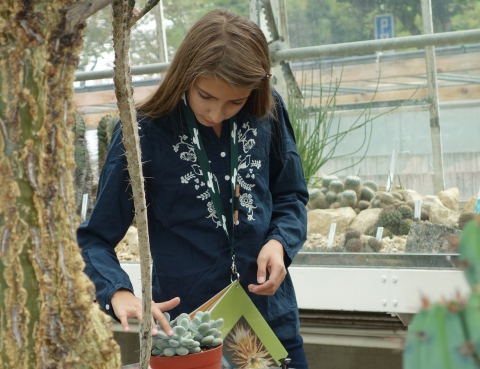 Auf Kaktus-Safari mit Sara Dorn: Ein Erlebnisrundgang für Kinder (9 und 13 Jahren).