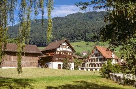 Haus zum Torkel, Berneck