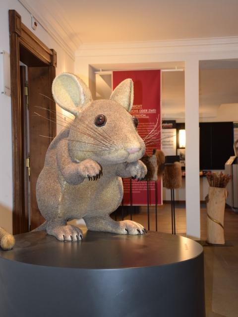 Grimms Tierleben. Tiere in Märchen und Forschung