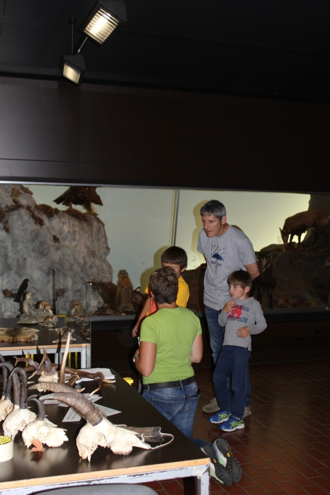 Attività di scoperta presso il Museo
